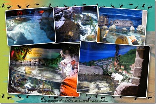 gardaland sea life 3